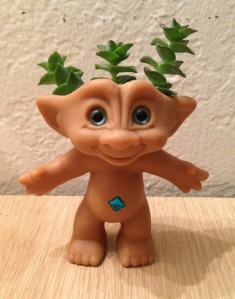 Gilbert The Succulent Troll